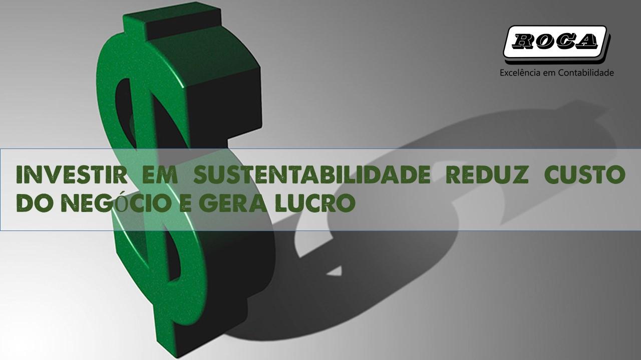 Investir Em Sustentabilidade
